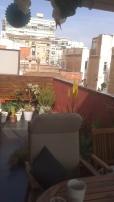 tarima-terraza11